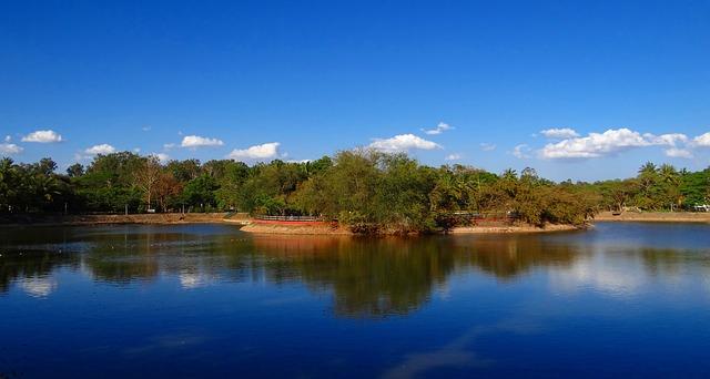 jezero, ostrov, stromy