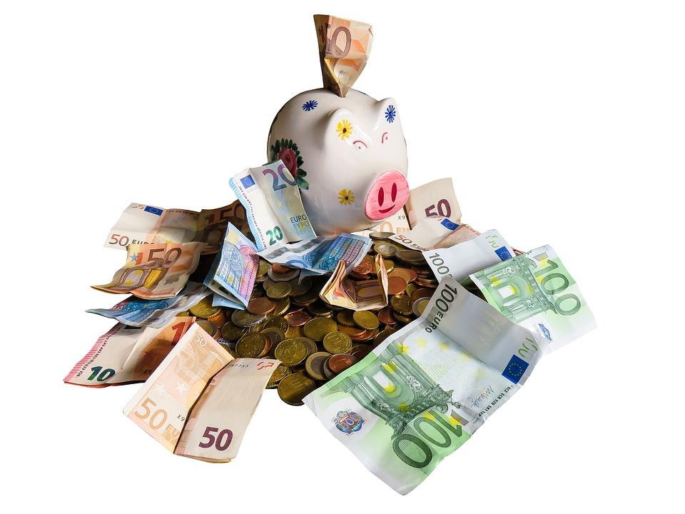 prasátko s eury
